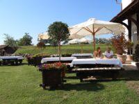 Alba Iulia – Hotel Medieval 3